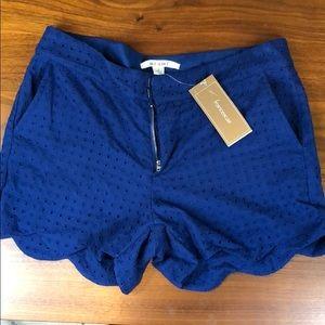 Francescas Blue Eyelet Lace Shorts NWT